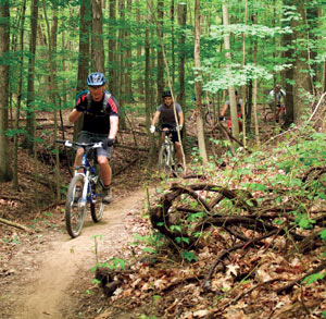 Bike_CleMet-mountain-bike-2