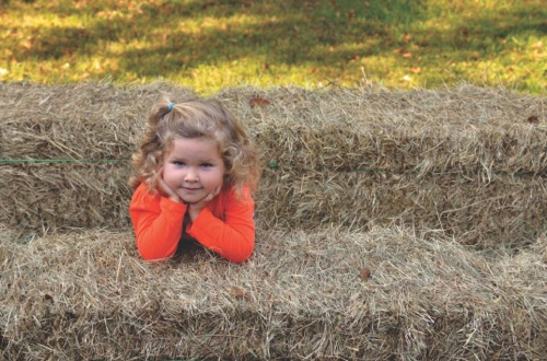 bigstock-young-girl-going-on-a-hay-ride-105374882