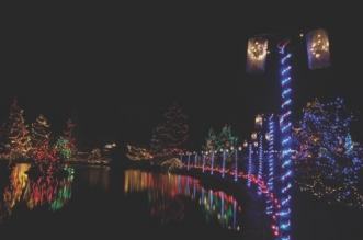bigstock-christmas-lights-festival-and-2442015