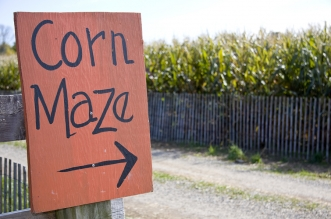 Things to do with kids in Ohio: corn mazes