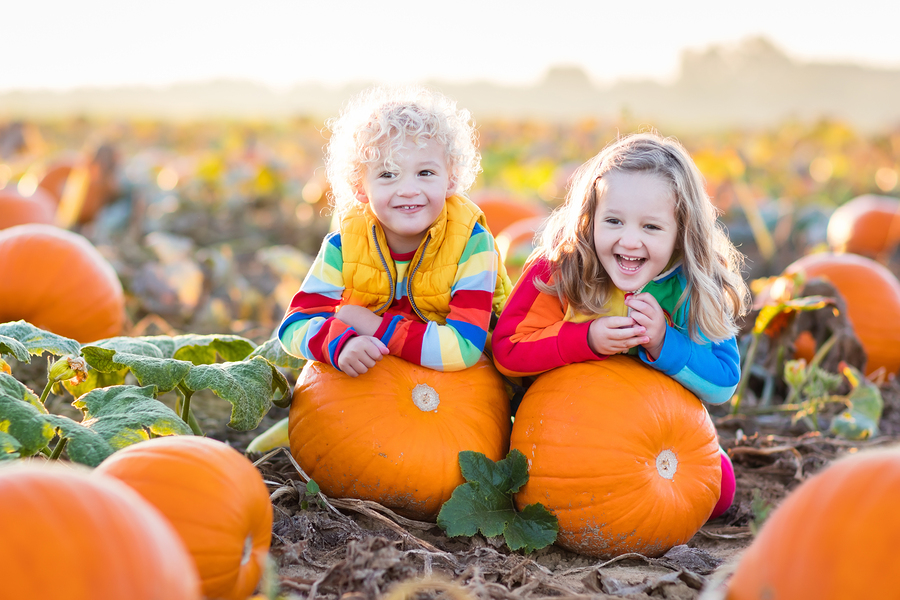Things to do in Ohio: fall pumpkin patches