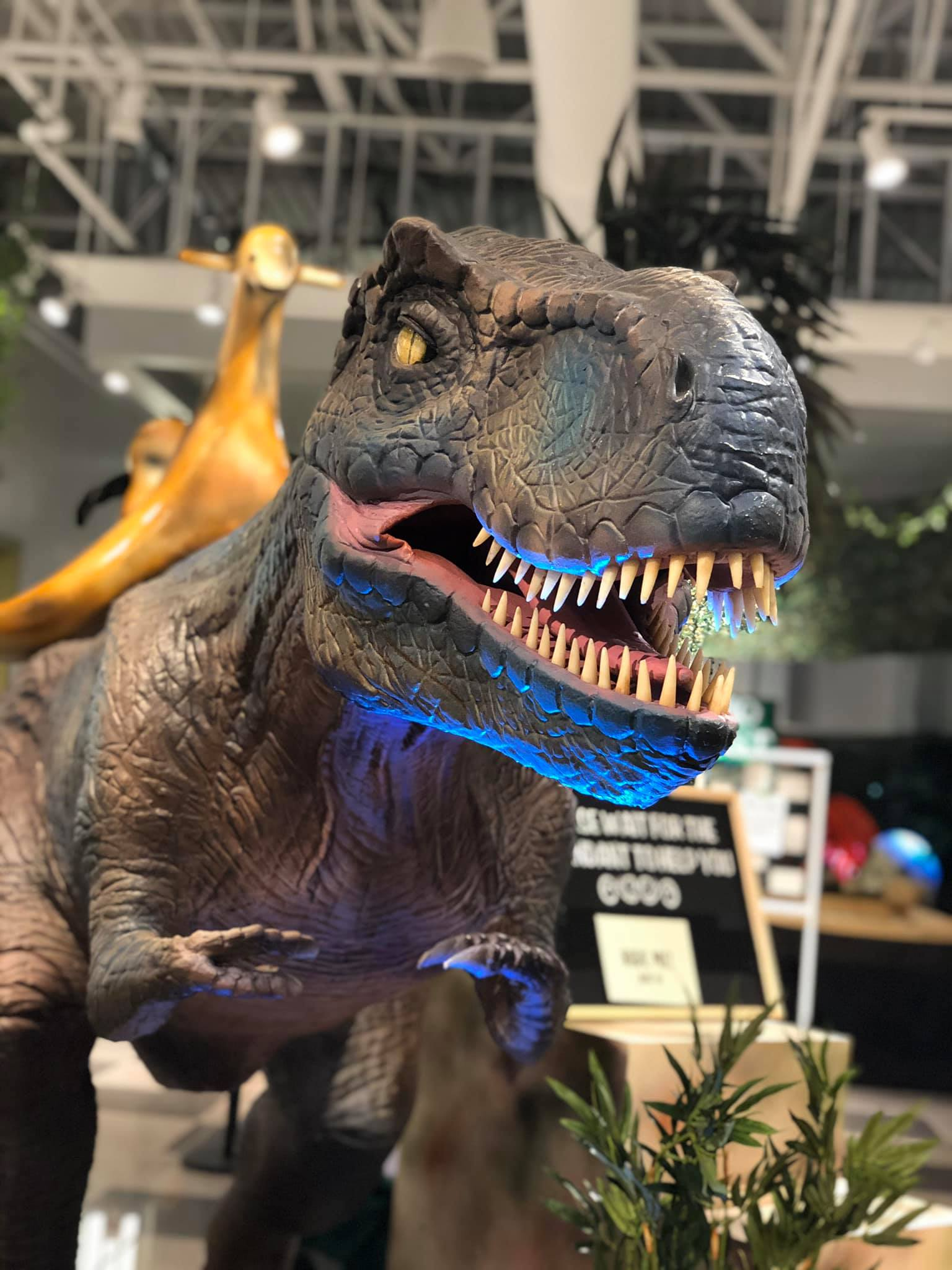 Great Lakes Mall Dino Quest